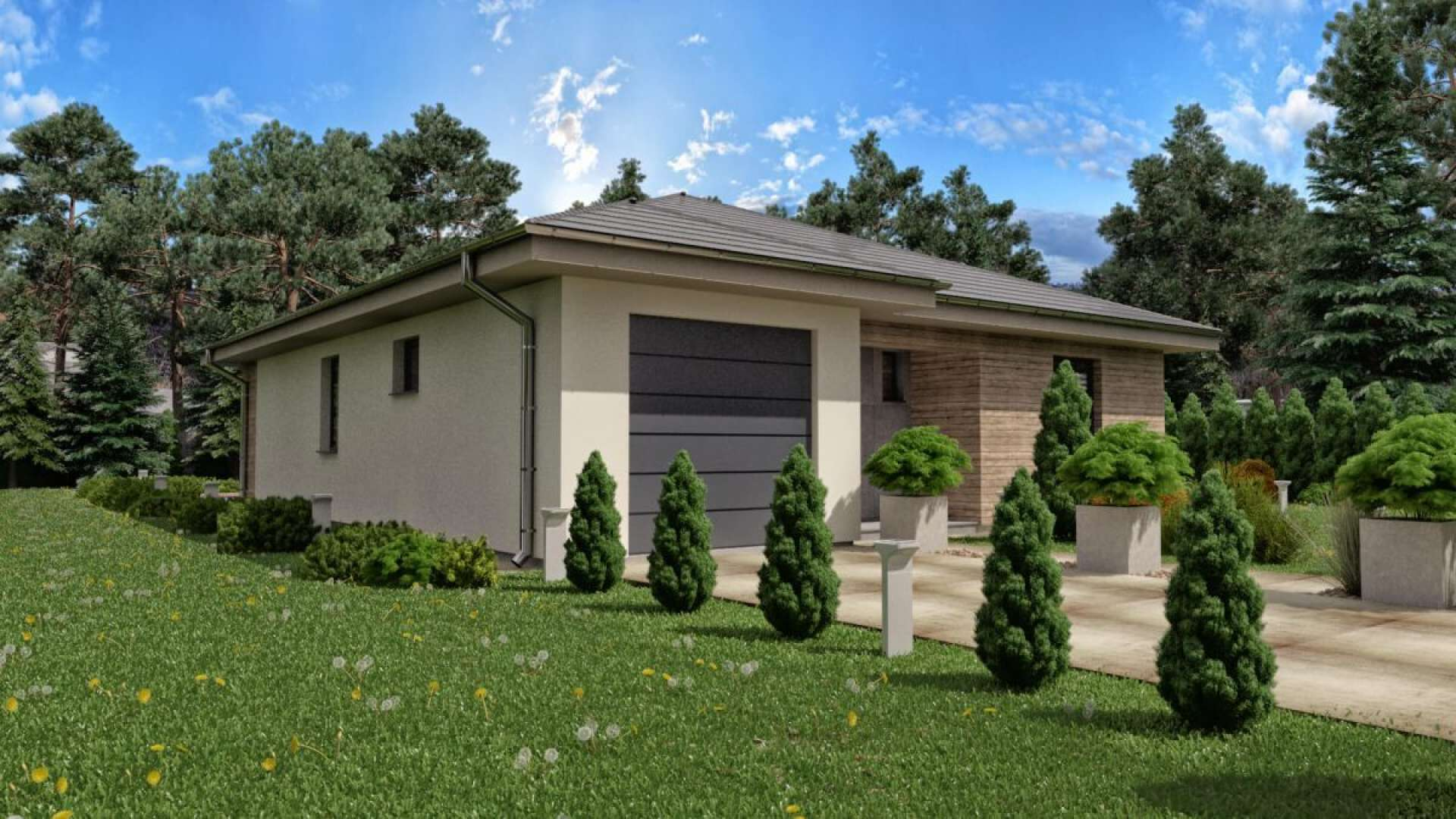 Projekt domu EVA 1